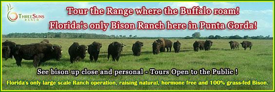 Ranch Tours at Three Suns Ranch Punta Gorda - Saturdays and Sundays 11am and 2pm.
