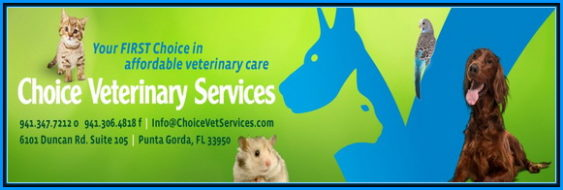 Choice Veterinary Services in Punta Gorda - Providing quality veterinary care at a price you can aff...