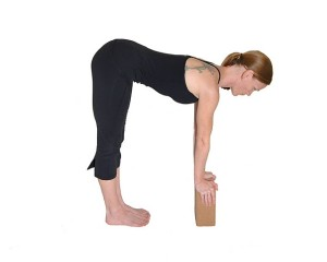 Introduction to Yoga Series @ The Yoga Sanctuary